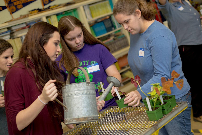Richland Parish - Greenhouse Program