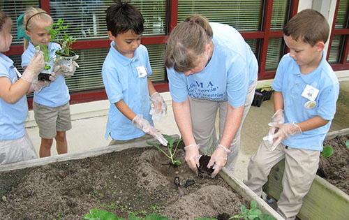 St tammany parish go glow grow program winter garden and world milk day for Winter gardens elementary school