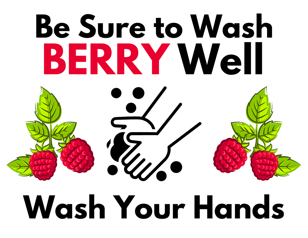 Be Sure to Wash Berry Well Wash Your Hands Graphic