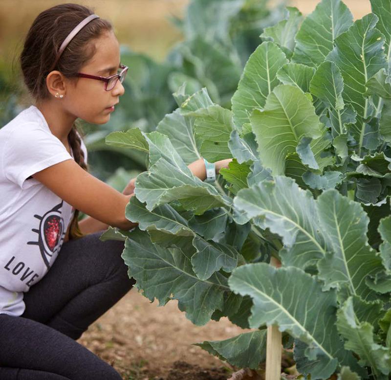 2019 USDA Farm to School Census Photo of a Girl in a Garden