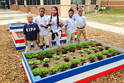RSD-Knowledge is Power Program N.O. - KIPP Central City Academy Garden Club