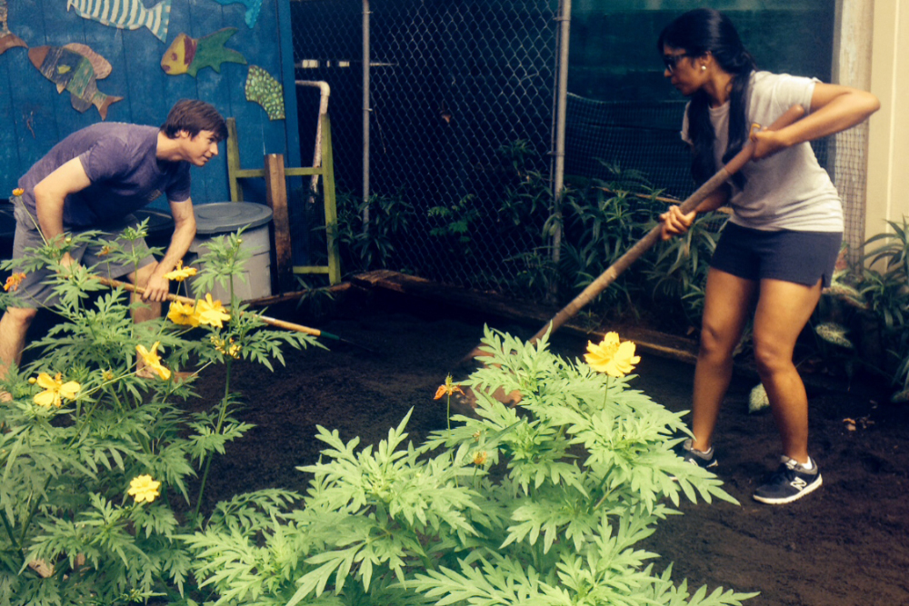LSU Medical Students at KIPP McDonogh 15 Primary Community Volunteer Day