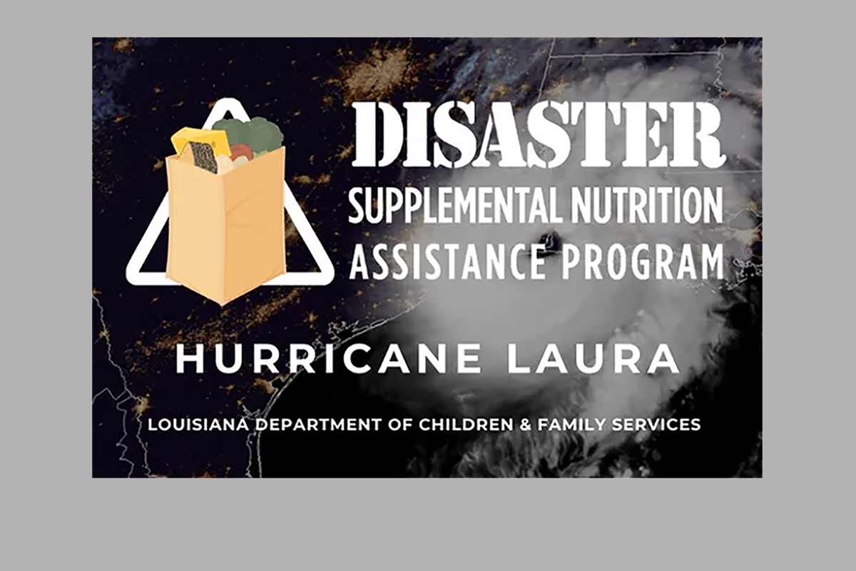 Disaster Supplemental Nutrition Assistance Program Graphic