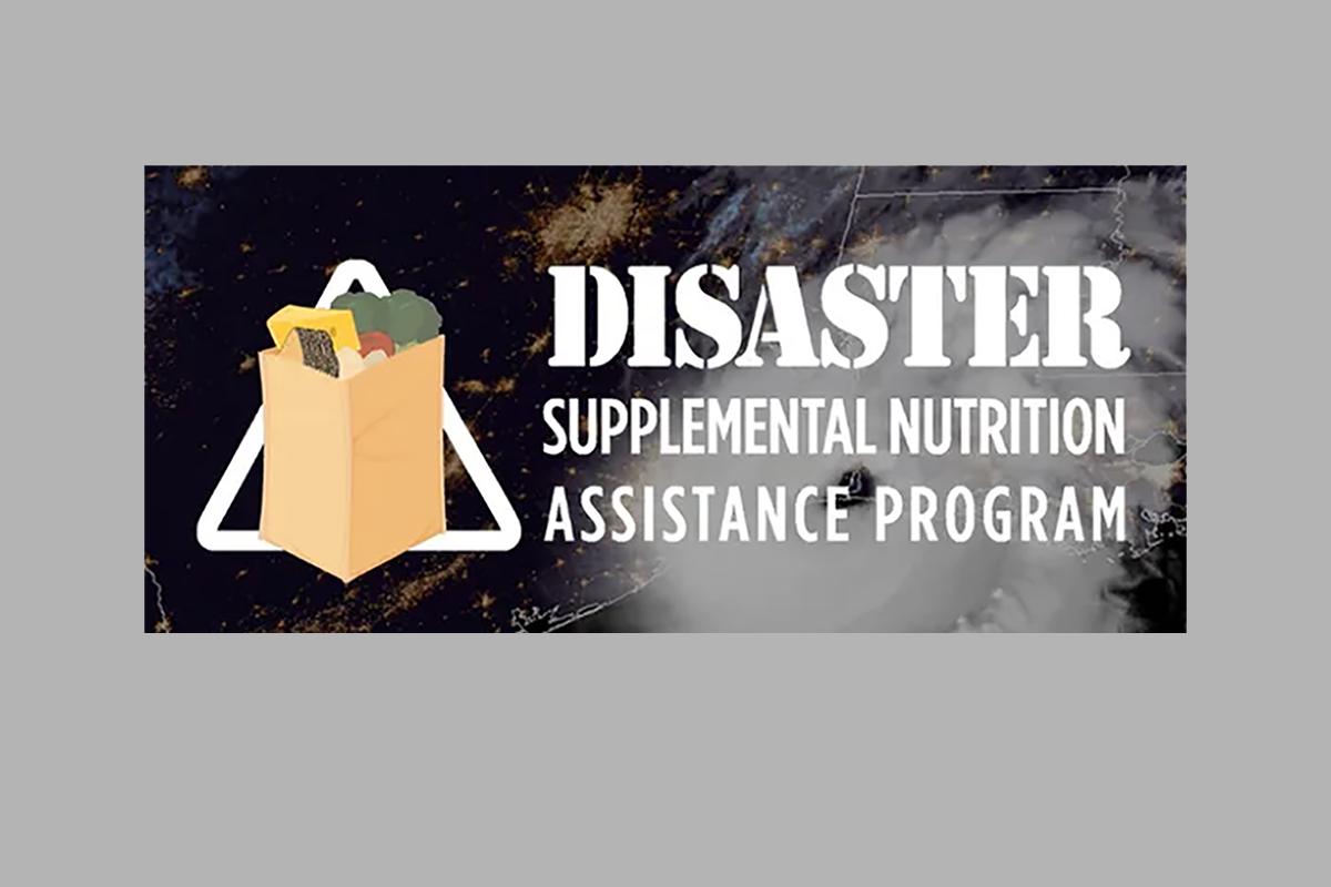 Disaster Supplemental Nutrition Assistance Program Graphic
