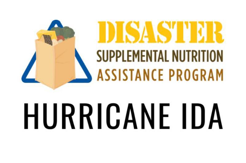 Disaster Supplemental Nutrition Assistance Program