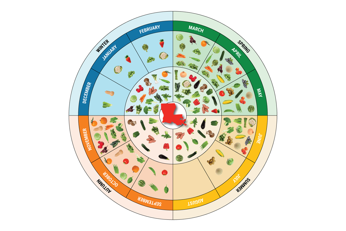 Louisiana Fit Kids Seasonality Wheel
