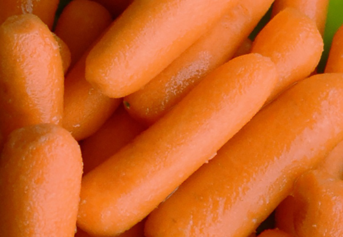 Fresh Baby Carrots Photo