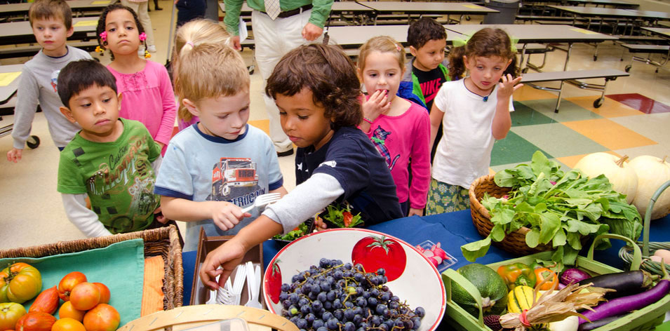 Students Looking at a Table of Produce