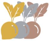 Turnip the Beet Graphic
